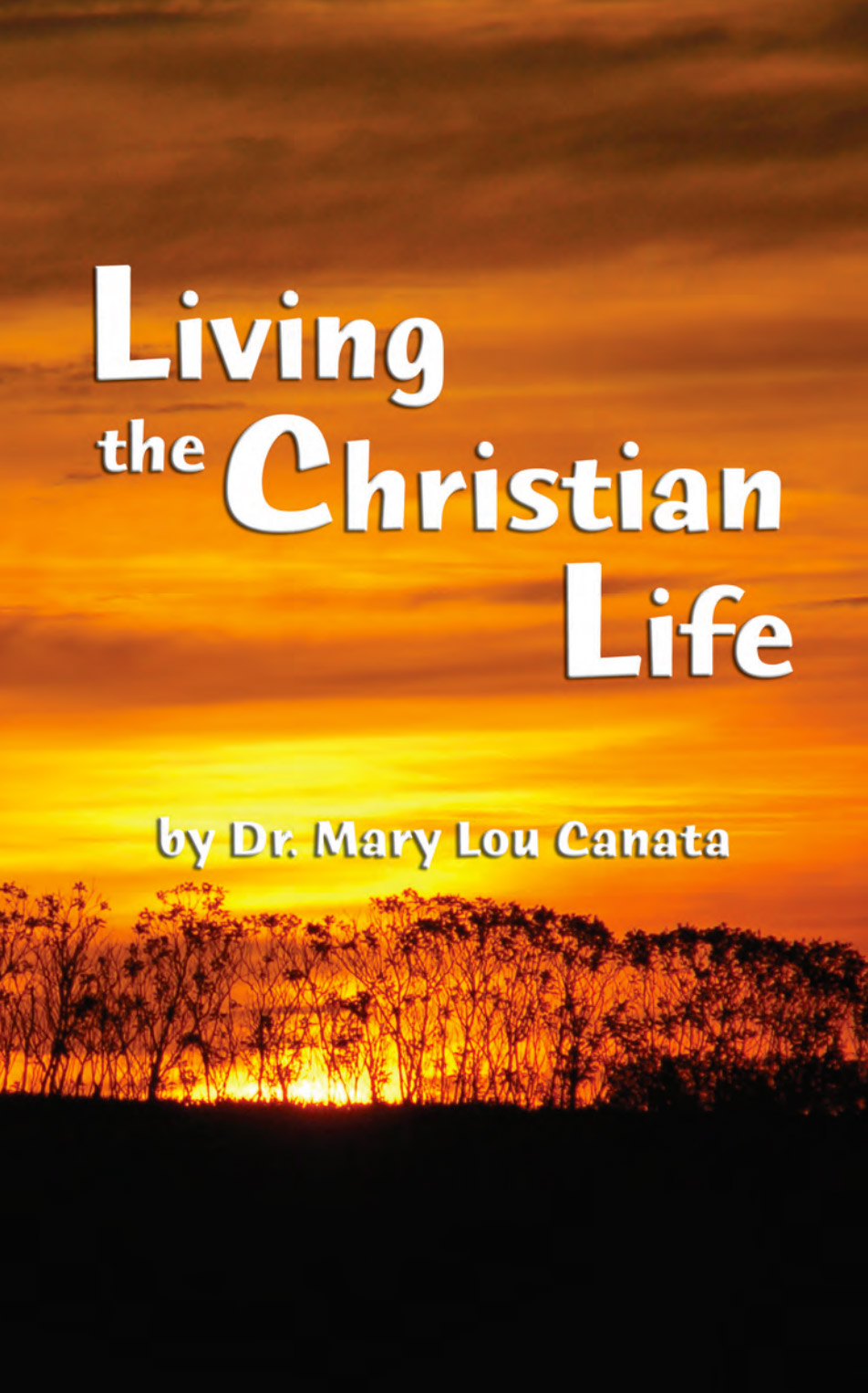 living the christian life  adult  african
